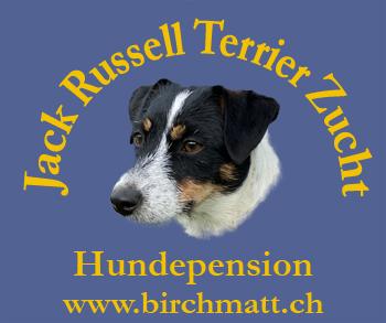 Logo Parson Russell Terrier Zucht Birchmatt.ch